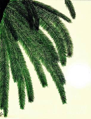 Drawing - Sunshine - Palm - Leaf by D Hackett