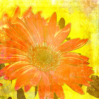 Photograph - Sunshine Surprise by Fran Riley