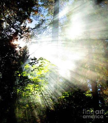 Sun Rays Painting - Sunstream by Shasta Eone