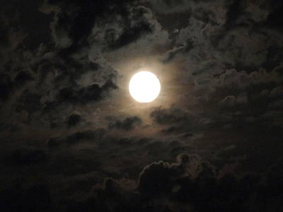 Photograph - Super Moon by Chrissey Dittus