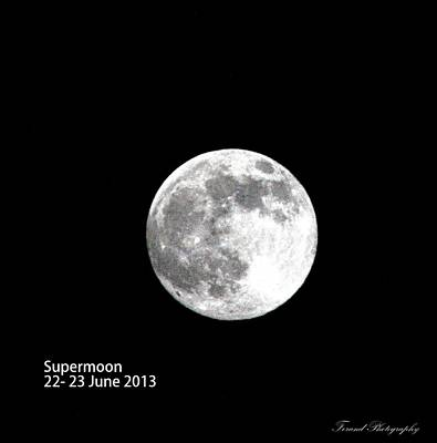 Photograph - Super Moon  by Debra Forand