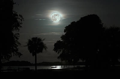 Palmetto Tree Photograph - Super Moon Over Wimbee Creek by Scott Hansen