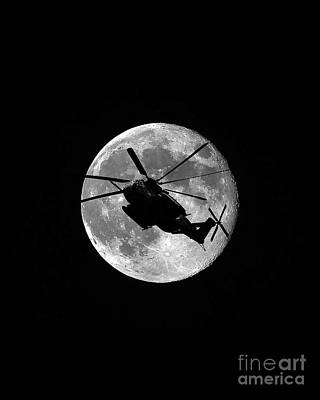 Super Stallion Silhouette Vertical Print by Al Powell Photography USA