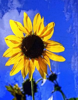 Super Sunflower Art Print