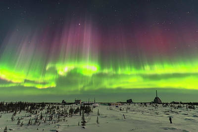 Observer Photograph - Superb Aurora Of March 14, 2016 3 by Alan Dyer