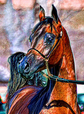 Horse Painting - Superb Stallion by Bruce Nutting