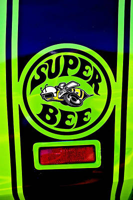 Photograph - Superbee by Sennie Pierson