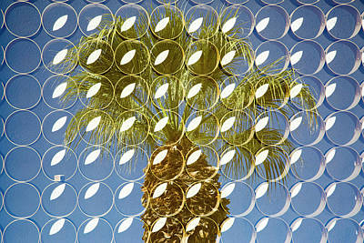 Superimposed Image Over Palm Trees Art Print by Julien Mcroberts