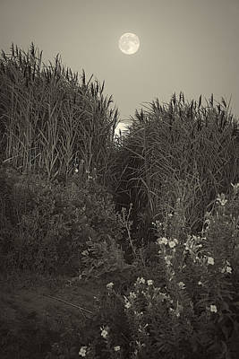 Supermoon 2014 Monochrome Art Print by Lourry Legarde