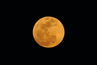 Photograph - Supermoon by Bradford Martin