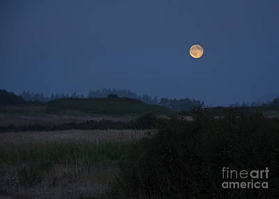Photograph - Supermoon In Sky by Valerie Garner