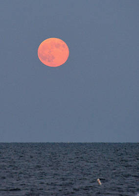 Photograph - Supermoon Over Nantucket Sound by Ken Stampfer