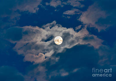 Man In The Moon Photograph - Supermoon by Robert Bales