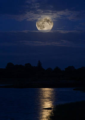 Photograph - Supermoon by Tony Reddington