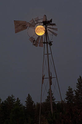 Photograph - Supermoon Windmill by Doug Davidson
