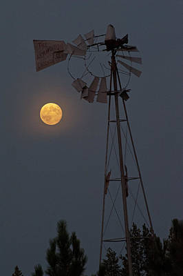 Photograph - Supermoon Windmill II by Doug Davidson