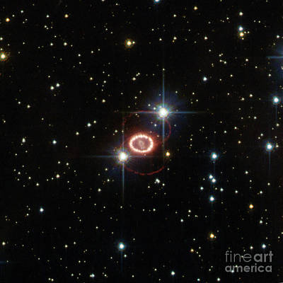 Heavenly Body Photograph - Supernova Sn 1987a by Science Source