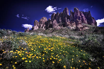 Superstition Mountains Photograph - Superstition Mountain At Spring Time by Sean Foster