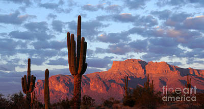 Superstition Mountains Wall Art - Photograph - Superstition Mountain Shades Of Sunset by Joanne West