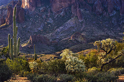 Photograph - Superstition Mountains Cactus by Dave Dilli