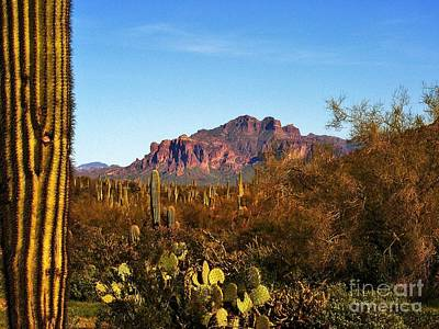 The Superstitions Photograph - Superstition Splendor by Marilyn Smith