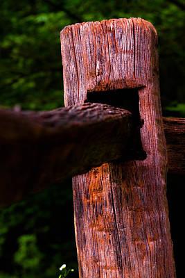 Photograph - Supportive Boundary by Haren Images- Kriss Haren
