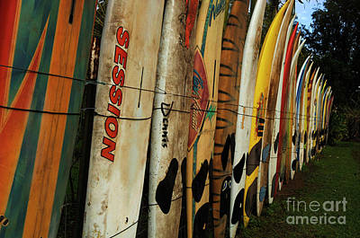 Surfboard Fence Photograph - Surboard Fence 3 by Bob Christopher