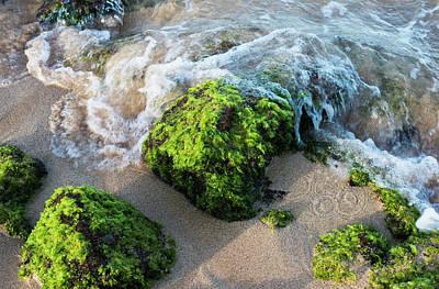 Surf Breaks On The Shore On Moss Art Print by Robert L. Potts