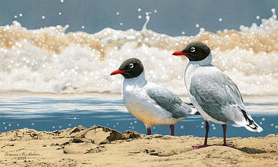 Painting - Surf 'n' Turf - Franklin's Gulls by Frances McMahon