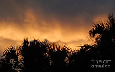 Photograph - Surf Sunset Of The Oasis In The Sky Over New Orleans Louisiana by Michael Hoard
