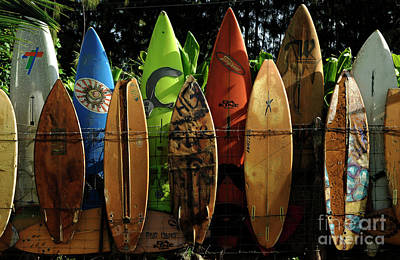 Hawaii Sea Turtle Photograph - Surfboard Fence 4 by Bob Christopher