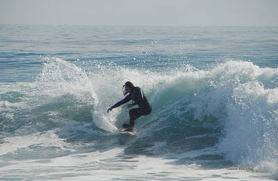 Photograph - Surfing In The Sun by Donna Blackhall