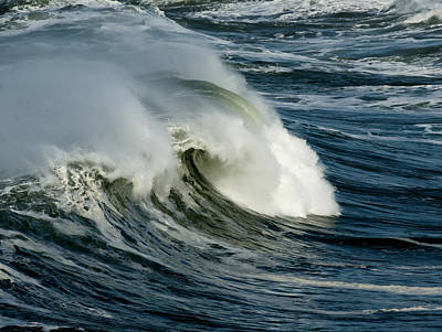 Photograph - Surfs Up by Betty Depee