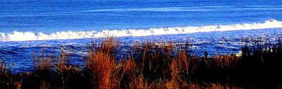 Photograph - Surfs Up by Pamela Hyde Wilson