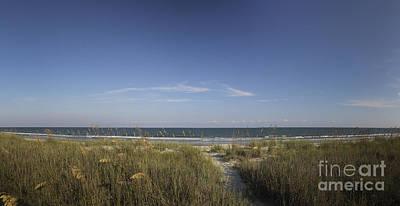 Pineapple - Surfside Beach SC by Teresa Mucha