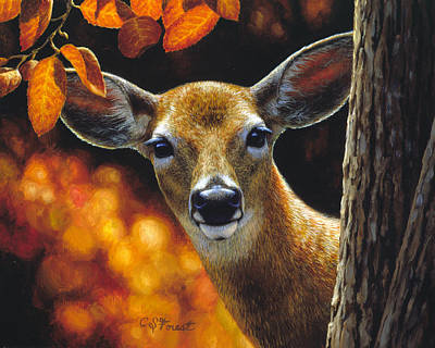 Whitetail Deer Painting - Whitetail Deer - Surprise by Crista Forest
