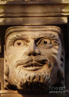 Photograph - Surprised Gargoyle by Deborah Smolinske