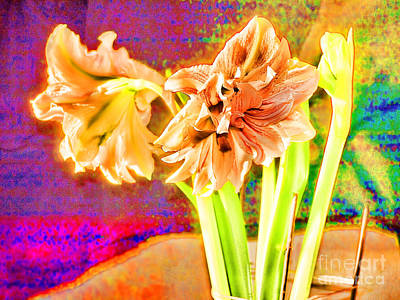 Photograph - Surreal Amaryllis  by Brenda Kean