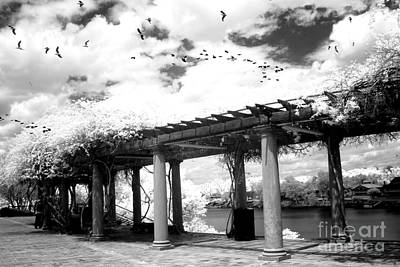 Surreal Augusta Georgia Black And White Infrared  - Riverwalk River Front Park Garden   Art Print
