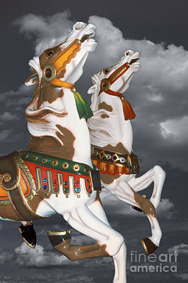 Photograph - surreal carousel horses - Flying Pintos by Sharon Hudson
