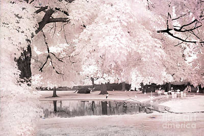 Surreal Dreamy Infrared Pink White Flamingo Park - Pink Infrared Fantasy Nature Art Print