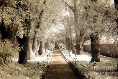 Surreal Dreamy Infrared Sepia - Hopeland Gardens Park South Carolina Pathway Nature Landscape  Print by Kathy Fornal