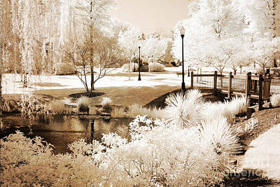 Surreal Infrared Sepia Nature Photograph - Surreal Dreamy Infrared Sepia Park Landscape by Kathy Fornal