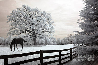 Surreal Dreamy Infrared Trees - Fantasy Infrared Horse Nature Landscape With Fence Post Art Print
