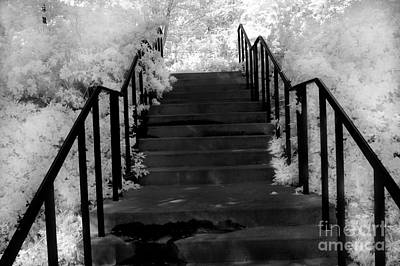 Surreal Fantasy Black And White Stairs Nature  Print by Kathy Fornal