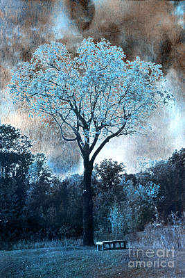 Surreal Dreamy Nature Photograph - Surreal Fantasy Dreamy Blue Fairytale Tree Nature Landscape - Surreal Solarized Blue Trees by Kathy Fornal
