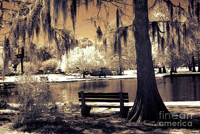 Nature Infrared Photograph - Surreal Fantasy Ethereal Infrared Sepia Park Nature Landscape  by Kathy Fornal
