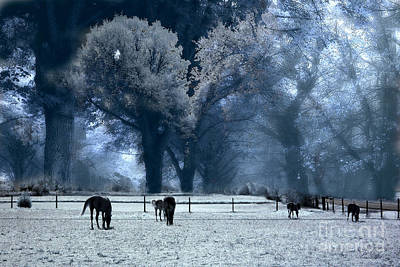 Surreal Fantasy Fairytale Infrared Nature Horses Blue Landscape Art Print by Kathy Fornal