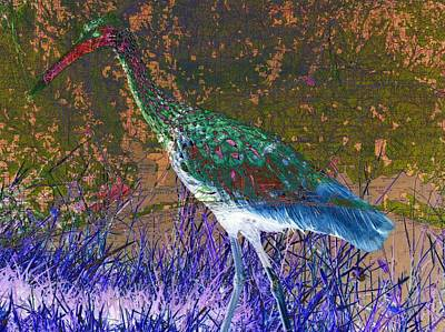 Digital Art - Surreal Florida Limpkin by Ron Davidson