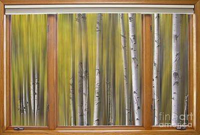 Photograph - Surreal Forest Dream Classic Wood Window View  by James BO Insogna